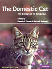 The Domestic Cat